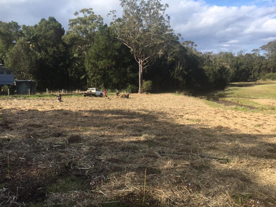 Eco Camp for Schools Queensland